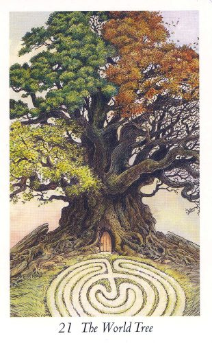 the-world-tree-wildwood-tarot