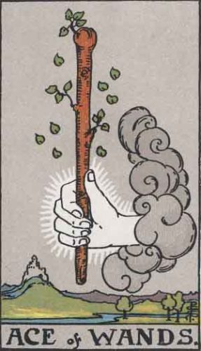 """""""Ace of Wands"""" from the Rider Waite Smith Tarot by A. E. Waite and Pamela Colman Smith, Pamela-A edition."""