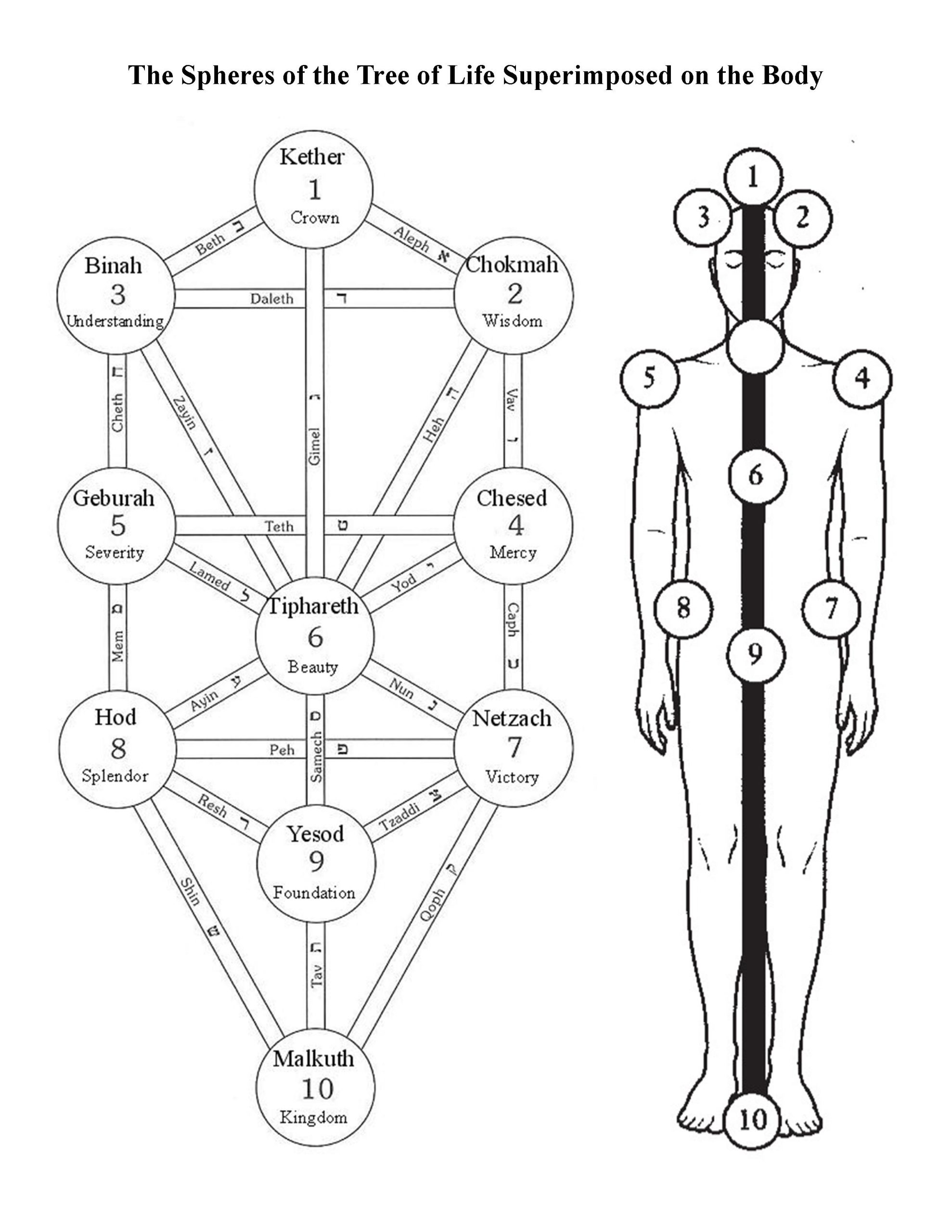 The Middle Pillar Exercise is based on the energy centers of the body that correspond to the spheres of the central pillar of the qabalistic Tree of Life.
